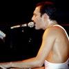 Яндекс.Музыка поздравила Фредди Меркьюри подборкой лучших песен Queen (Слушать)