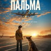 Мальчик и собака встречают самолёты в аэропорту в трейлере «Пальмы» (Видео)