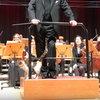 Кошка выступила с оркестром в Стамбуле (Видео)