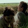 Тимоти Шаламе и Арми Хаммер вернутся в сиквеле «Зови меня своим именем»