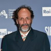 Лука Гуаданьино снимет новое «Лицо со шрамом»