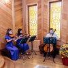 РПСМИ выпустил рекомендации по безопасному возвращению к работе концертной индустрии