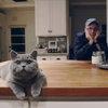 Travis научили петь кота Фрэна Хили (Видео)