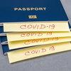 Башкортостан повысит заполняемость залов за счёт введения «антиковидных паспортов»