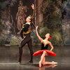 Театр La Classique вернет на сцену «Дон Кихота» с новым составом артистов
