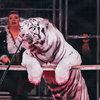 Росгосцирк проведет контрольное взвешивание животных после карантина