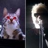 Offspring показали ужасы самоизоляции и пандемии (Видео)