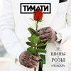 Тимати снял участниц «Холостяка» в новом клипе (Видео)