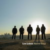Los Lobos перепели Beach Boys и анонсировали альбом каверов (Слушать)