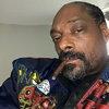 Снуп Догг покажет себя в сериале в амплуа «черного Фореста Гампа».