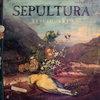 Sepultura выпустила альбом с уникальными версиями своих песен (Слушать)