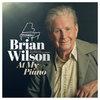 Брайан Уилсон выпустит альбом фортепианных версий хитов Beach Boys (Слушать)