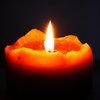 Александра Вавилина погибла при пожаре в Санкт-Петербурге