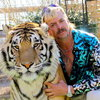 Сиквел «Короля тигров» обещает «еще больше безумия и хаоса» (Видео)