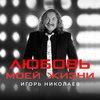Игорь Николаев создал гимн «Любви моей жизни» (Видео)