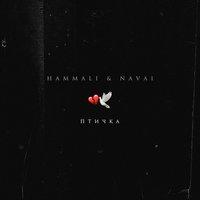 Музыкальные чарты за 21 неделю: лидируют HammAli & Navai, BTS, Morgenshtern